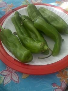 New Mexico green chile