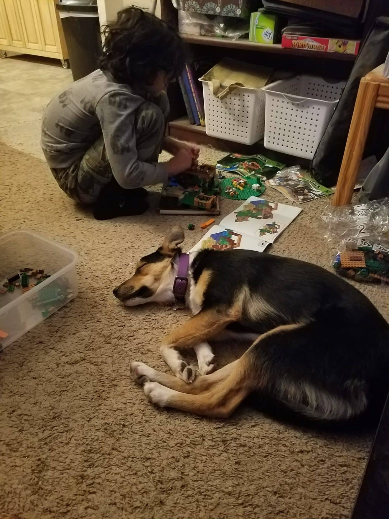 LEGO building with Devlyn & Titan