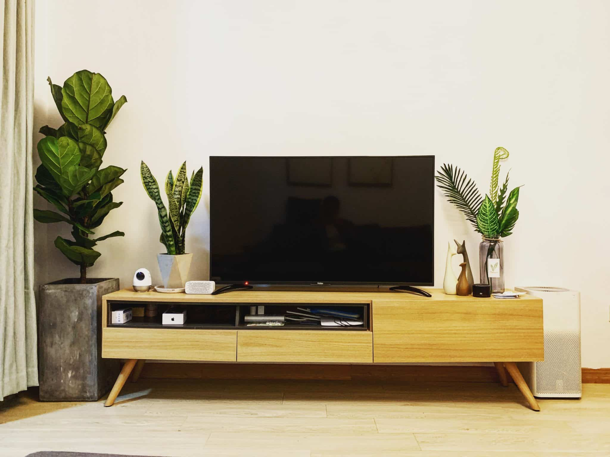 Television on a TV stand